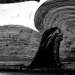 Das Buch....