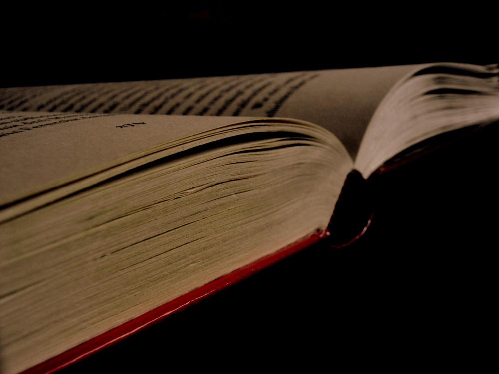 Das Buch.