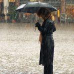 Das Buch im Regen