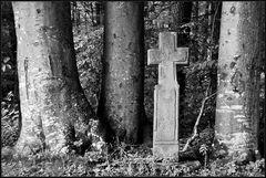Das Bucheckerkreuz
