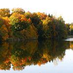 Das bunte Herbstlaub leuchtet um die Wette