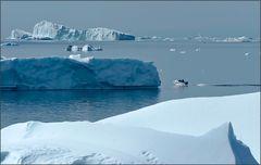 das düsen zwischen den eisbergen