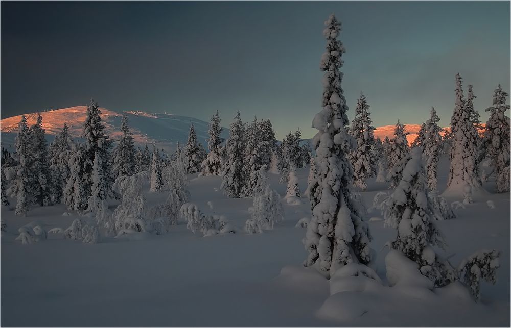 Das Ende der Polarnacht