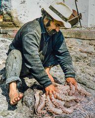 Das Ende eines Oktopus,Egina, Griechenland.         ..DSC_6561