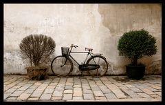 das Fahrrad ...