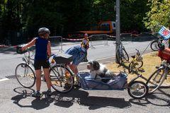 Das Fahrrad, bietet unbegrenzte Möglichkeiten