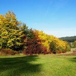 Das Farbenspiel der Natur - Herbst