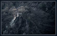 Das Felsennest