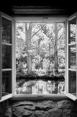 """""""Das Fenster"""""""