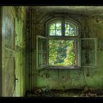 das Fenster ...