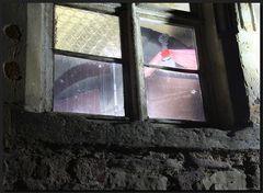 ...Das Fenster des Schreckens...  :-o