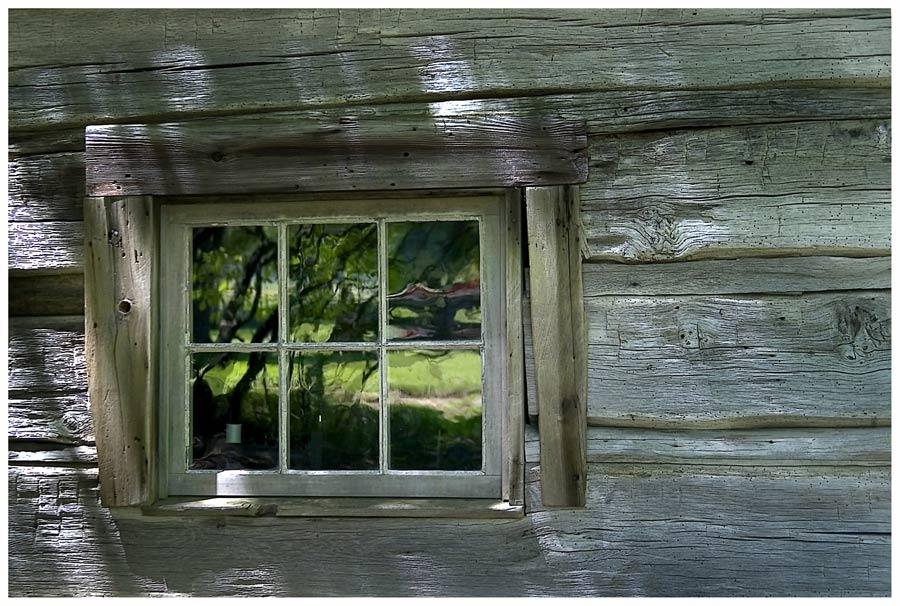 Das Fenster im Wald ..