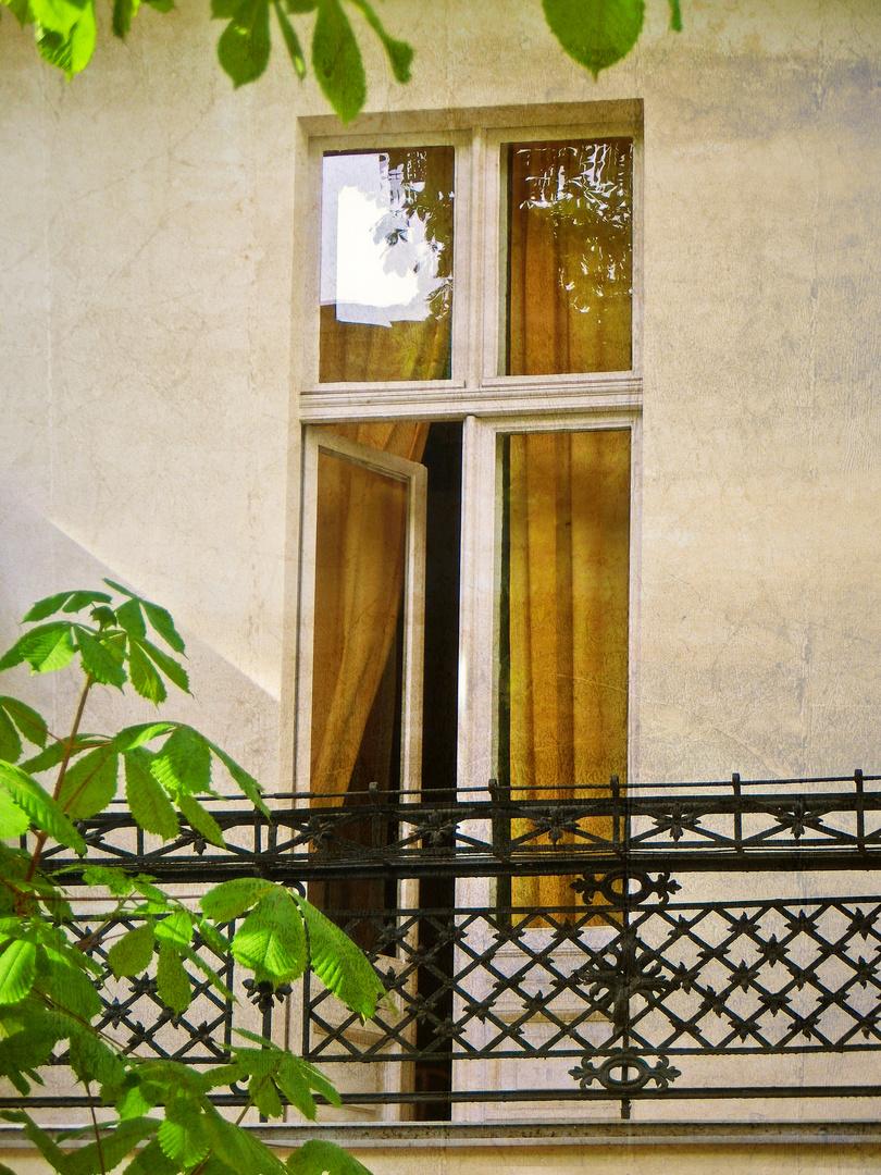 Das Fenster zum Hof