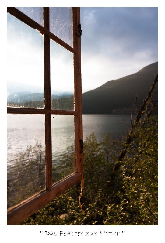 Das Fenster zur Natur