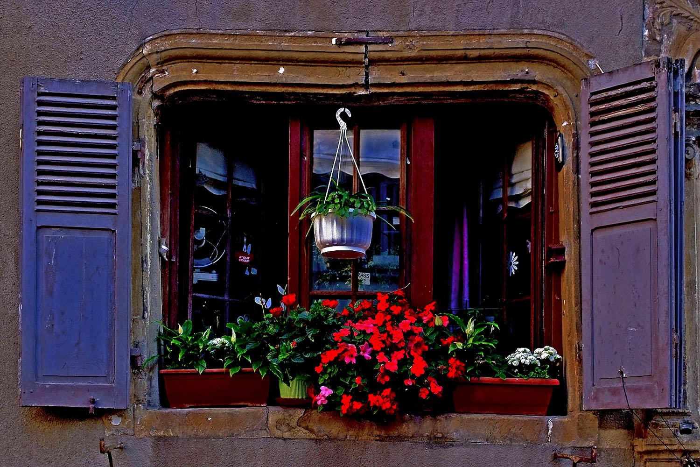 Das Fenster zur Strasse ...
