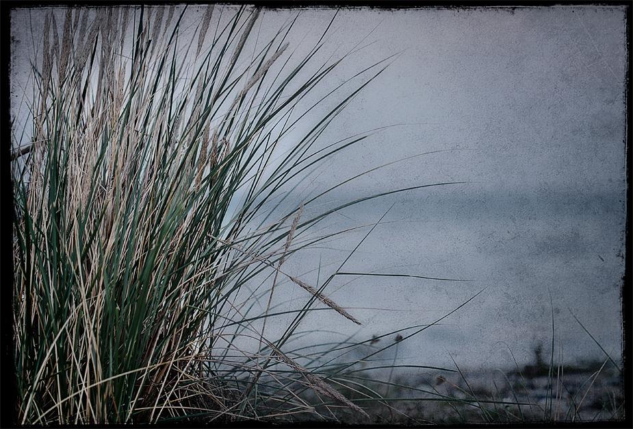 Das Flüstern der Ostsee