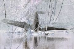 Das Flugzeug im Teich
