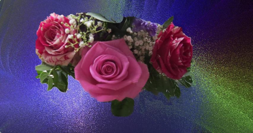 Das Freitagsblümchen für Gisela