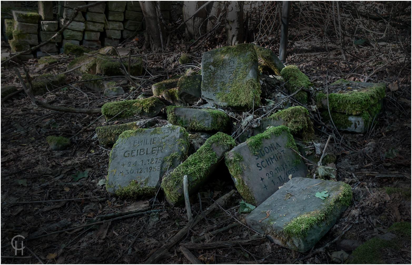 Das Geheimnis der Totenkapelle im Wald