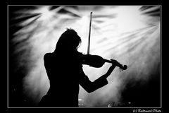 Das Geigenspiel