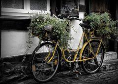 Das gelbe Fahrrad