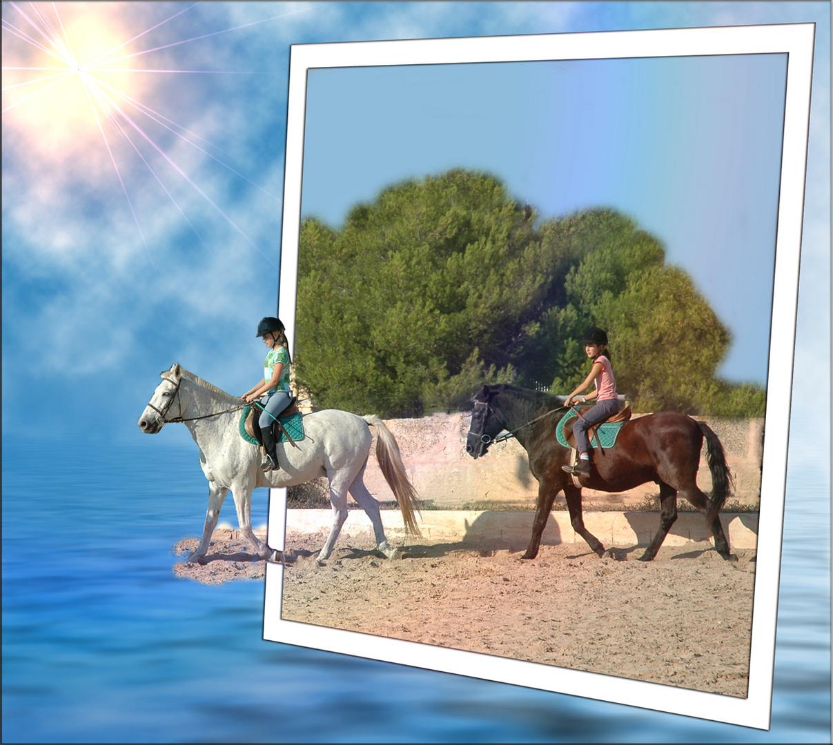 Das Glück der Pferde...........