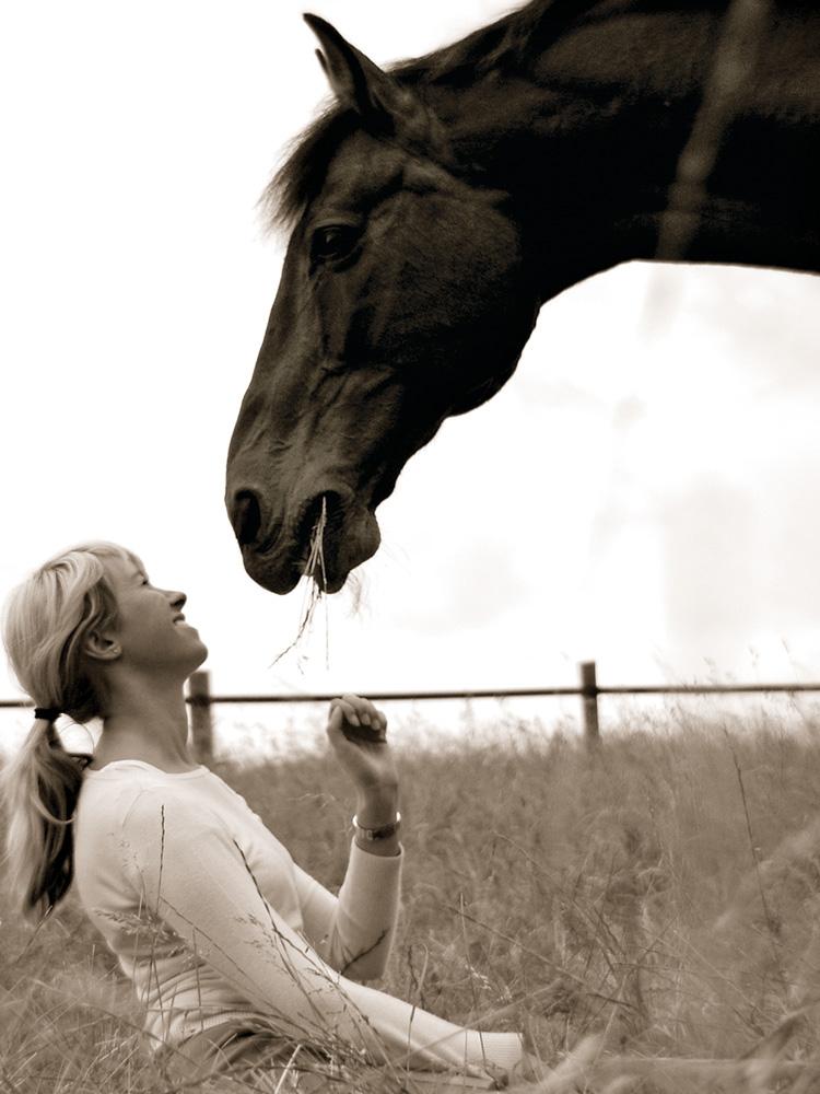 das Glück der Pferde ist der Reiter auf der Erde