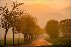 Das goldene Licht des Weserberglands...