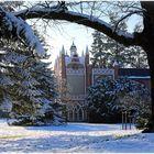 Das Gotische Haus im Winter