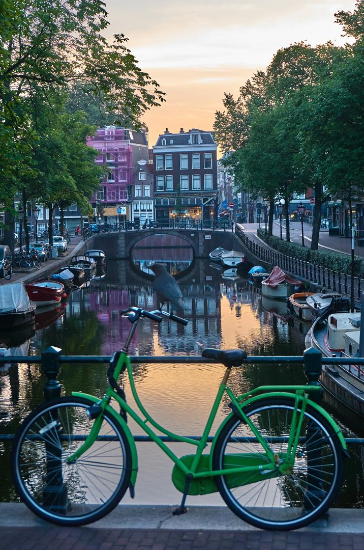 Das grüne Fahrrad
