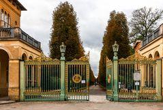 Das Grüne Gitter