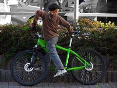 Das grüne Rad