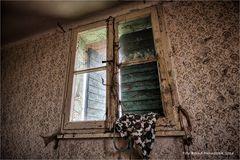 Das Haus der alten Dame und ihr lautloses Eigenleben ...