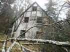 Das Haus im Wald