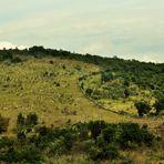 das Hinterland der Adria in der Höhe von Split