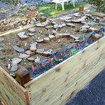Das Hochbeet ist fertig und mit ca. 100 Alpenpflanzen versehen worden