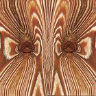 Das Holz erzählt uns eine Geschichte! - Le bois qui nous parle...