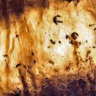 """Das """"Innenleben"""" eines Eis-Stalagmiten... - Stalagmites dans une grotte."""