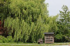 das Insektenhotel gleich neben der Weide - praktisch