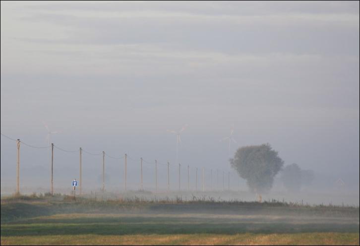 das ist ,,der Nebel,, zugeschnitten