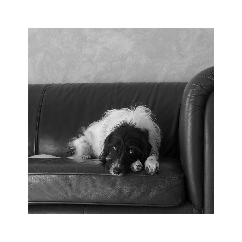 .....das ist mein Sofa