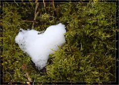 das kalte Herz