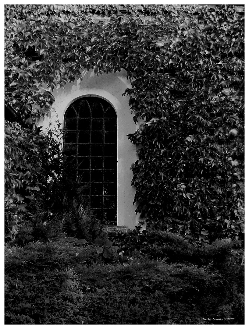Das Kirchenfenster