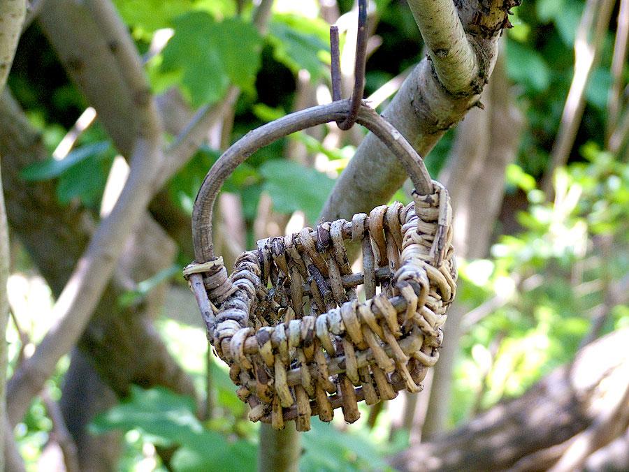Das Körbchen im Essigbaum