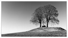 Das Kreuz zwischen den Bäumen