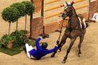 Das lachendes Pferd (2)