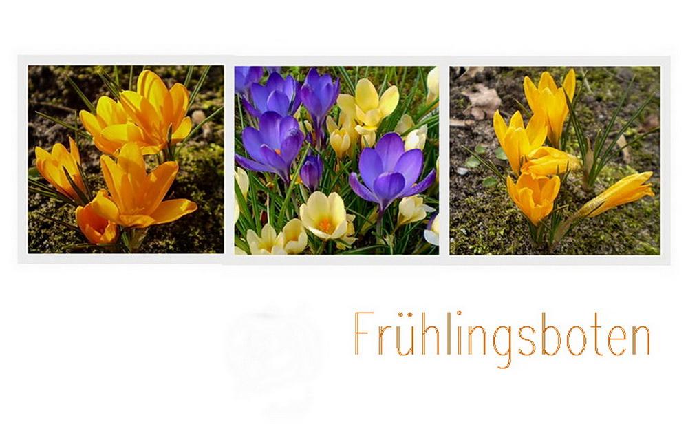 Das Lächeln des Frühlings