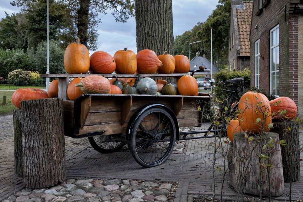 das Lastenrad...