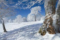 Das Leben als Wintertag
