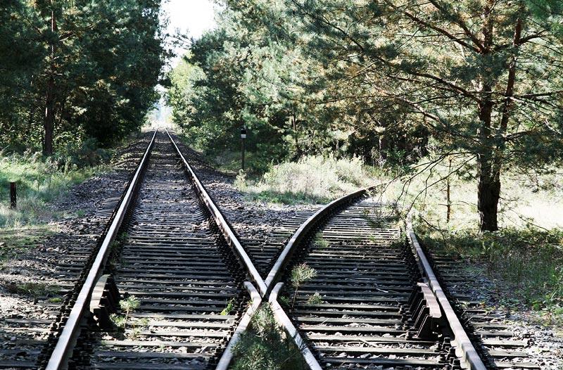 das leben - oder: welchen weg würdest du wählen?